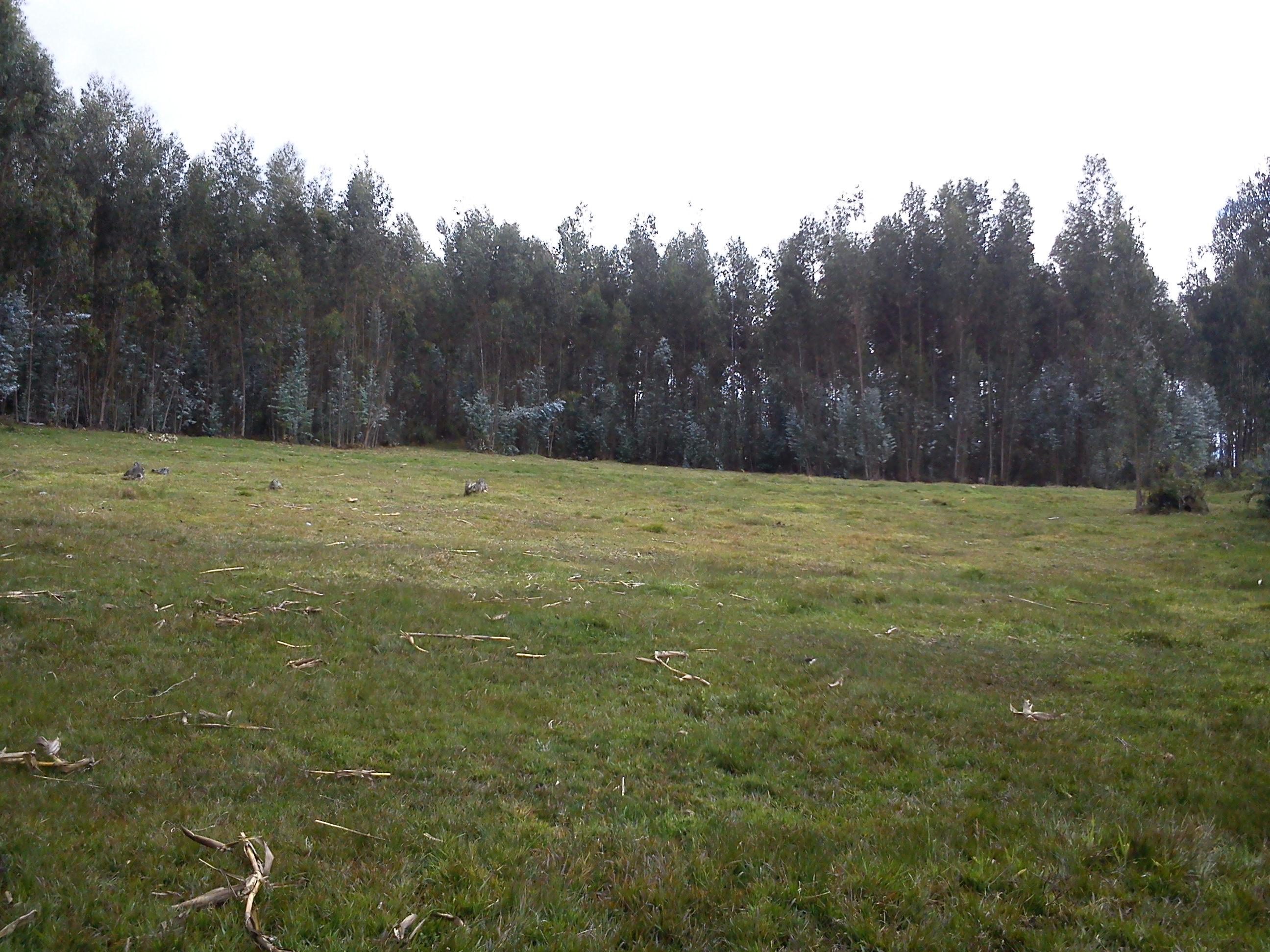 Venta de Hermoso Terreno sector San Miguel de Putuzhi, a 2,46 km de la AV. Ordoñez Lazo Cuenca Ecuador