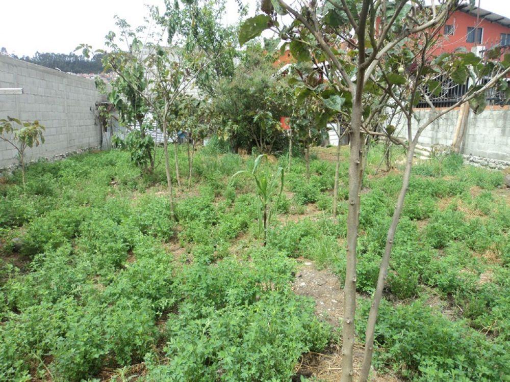 Venta a crédito de Hermoso Terreno sector Uncovía con todas las obras Cuenca – Ecuador.