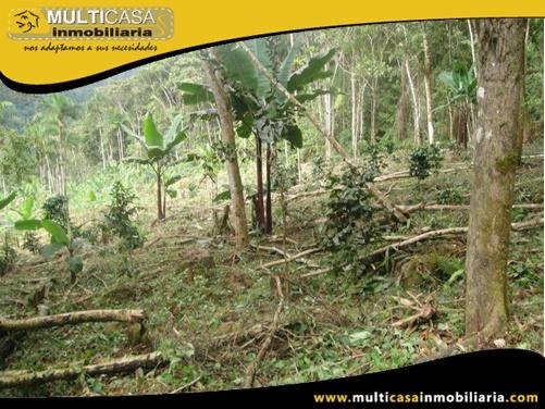 Hacienda en Venta a Crédito Sector Canoa Rota Gualaquiza - Ecuador