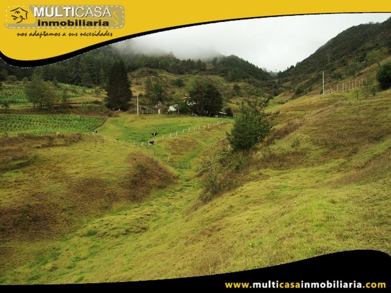 Terreno en Venta a Crédito Sector Totorillas Cumbe-Ecuador