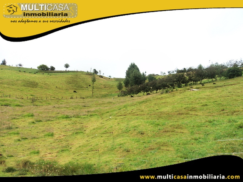 Terreno de 5382.5 m2 en Venta a Crédito Sector San José de Raranga - Ecuador