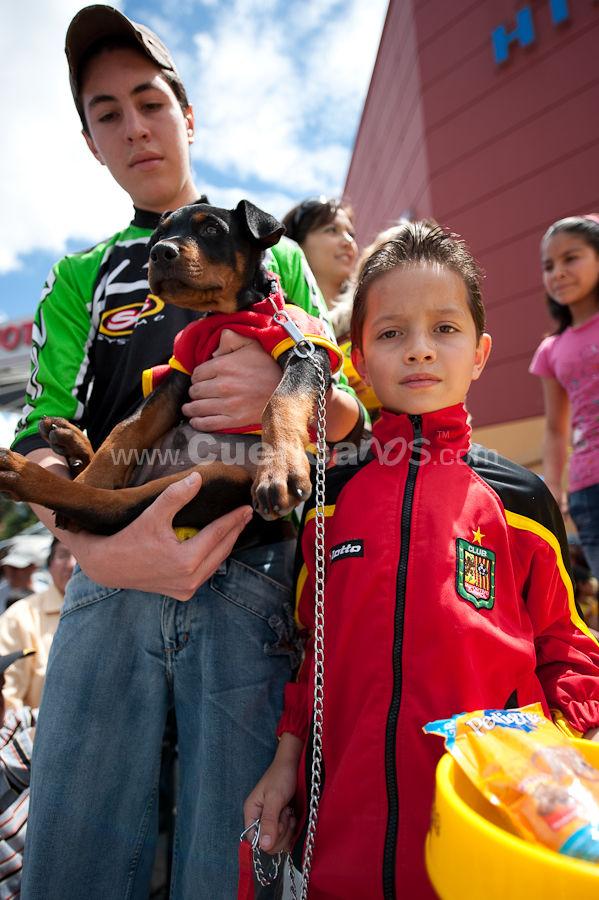 Festival Canino Mall 2009 .- En los Parqueaderos del Centro Comercial Mall del Rió se realizo la exhibición Canina Cuenca 2009 donde decenas de Mascotas con sus dueños desfilaron por el escenario demostrando la pureza de sus razas y la gracia del mejor amigo del hombre.