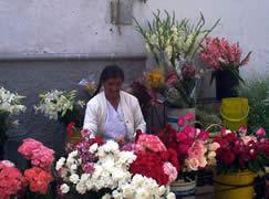 Plaza del Carmen o de las Flores .- La Plaza de las Flores sen encuentra ubicada en las calles Padre Aguirre y Sucre.