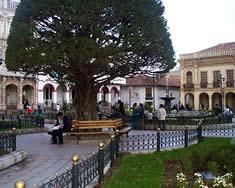 Parque Calderón .- Representa el corazón de la antigua ciudad o Centro Histórico. Constituyó desde la misma fundación de Cuenca el eje urbano más importante.