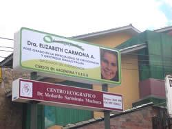 Teresa Elizabeth  Carmona Alvarado